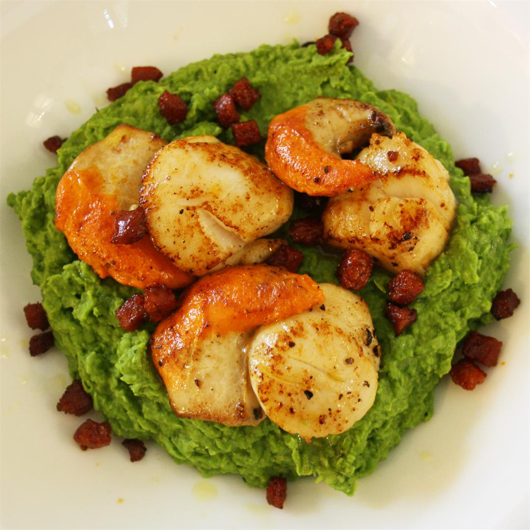 Seared Scallops on Peas with Chorizo