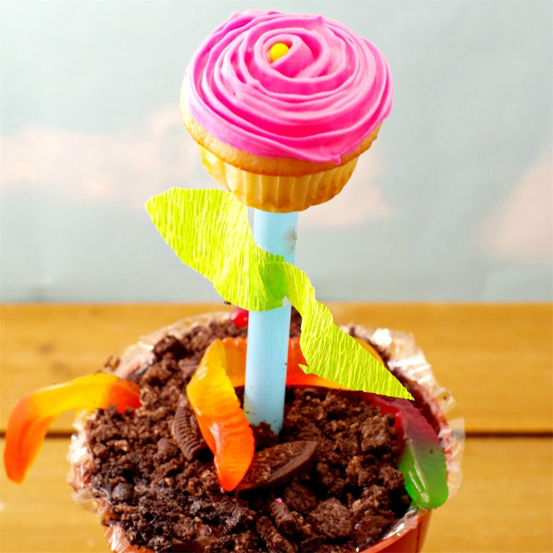 Cupcake Flower Pots - an edible craft and Mother's day gift