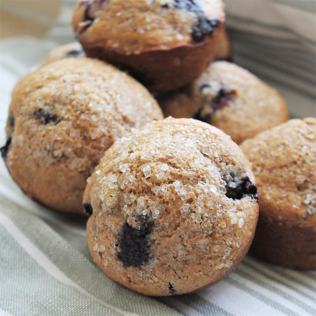 Whole Wheat Blueberry Pecan Muffins