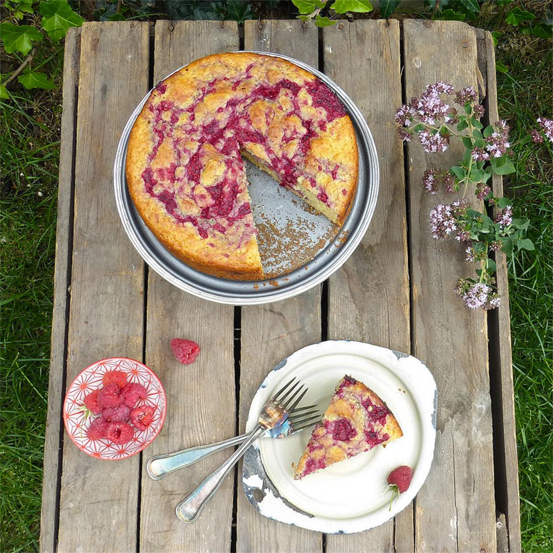 Raspberry Swirl Spelt Sponge Cake