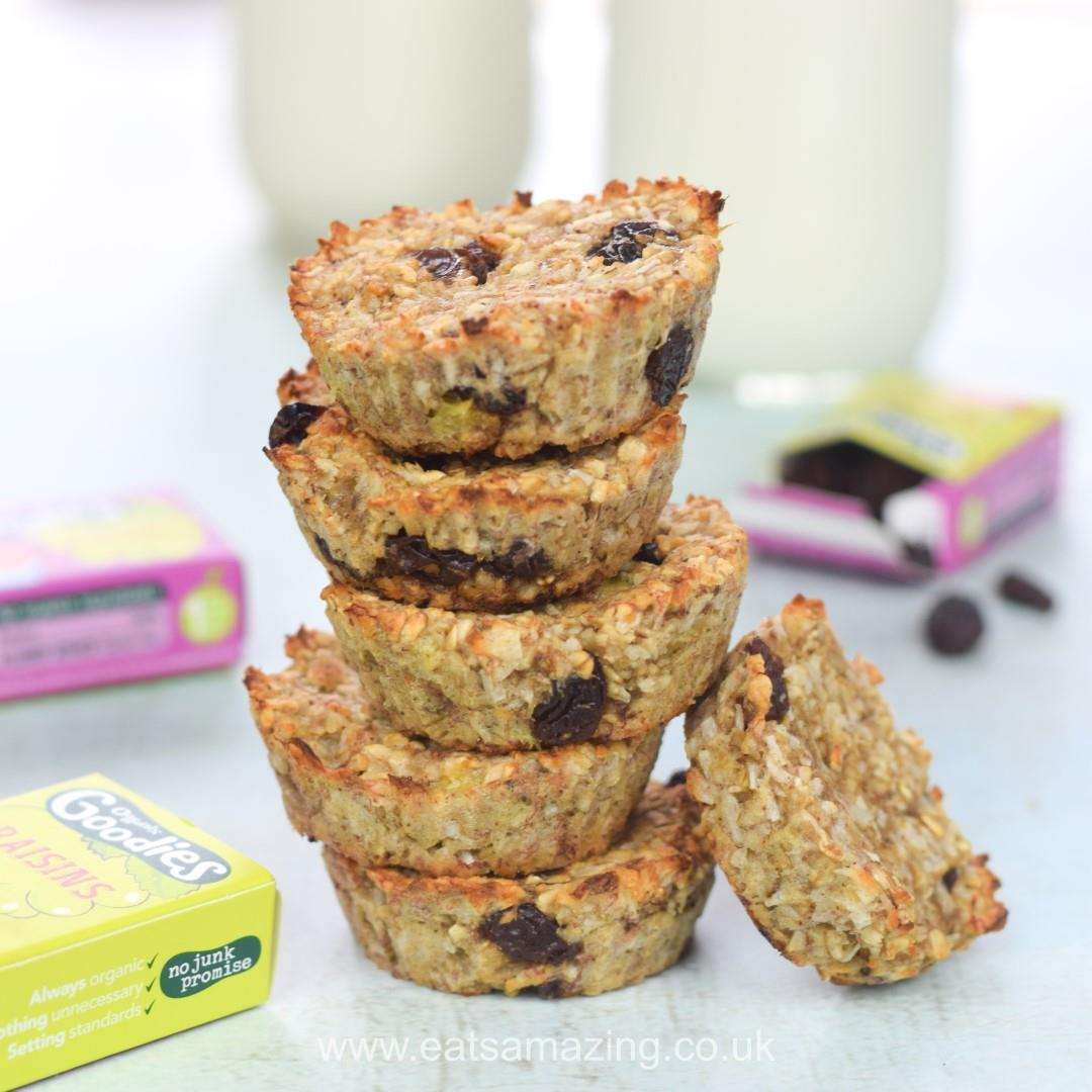 Coconut & Raisin Banana Oat Cookie Bites