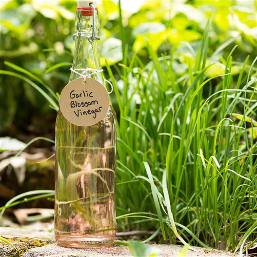 Garlic or Chive Blossom Vinegar