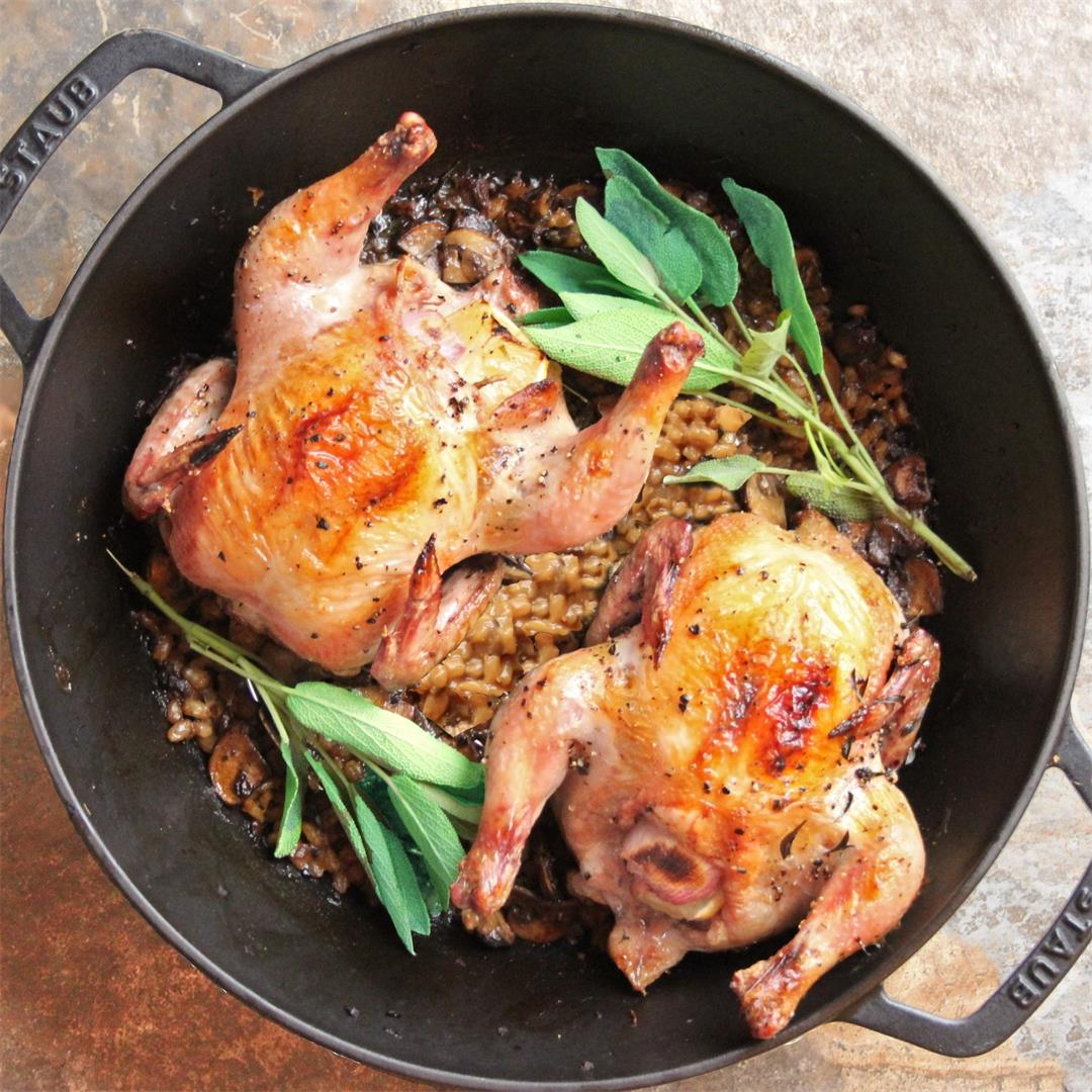 One-Pot Cornish Game Hens with Mushroom-Barley Pilaf