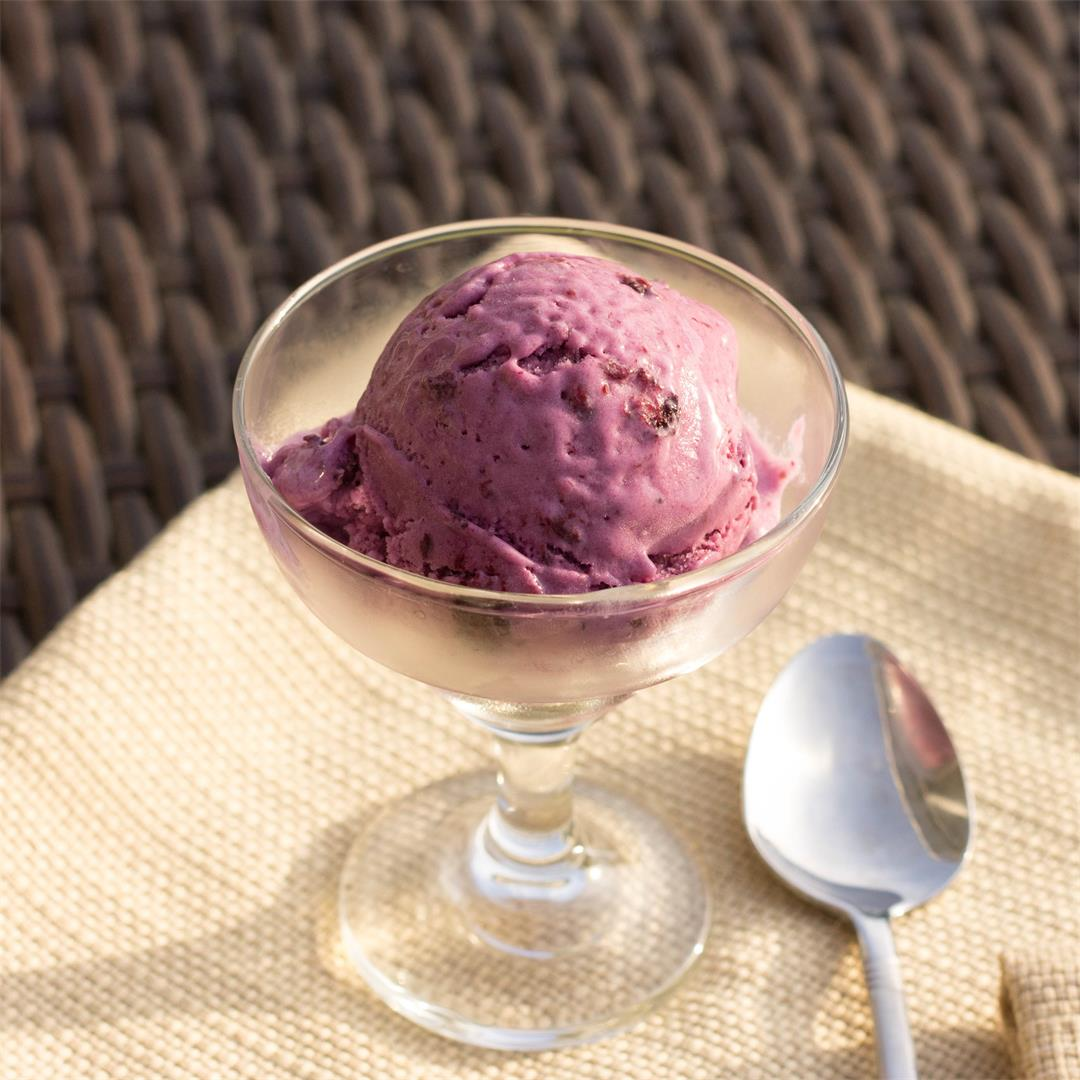 Dairy Free Blueberry Coconut Lime Ice Cream
