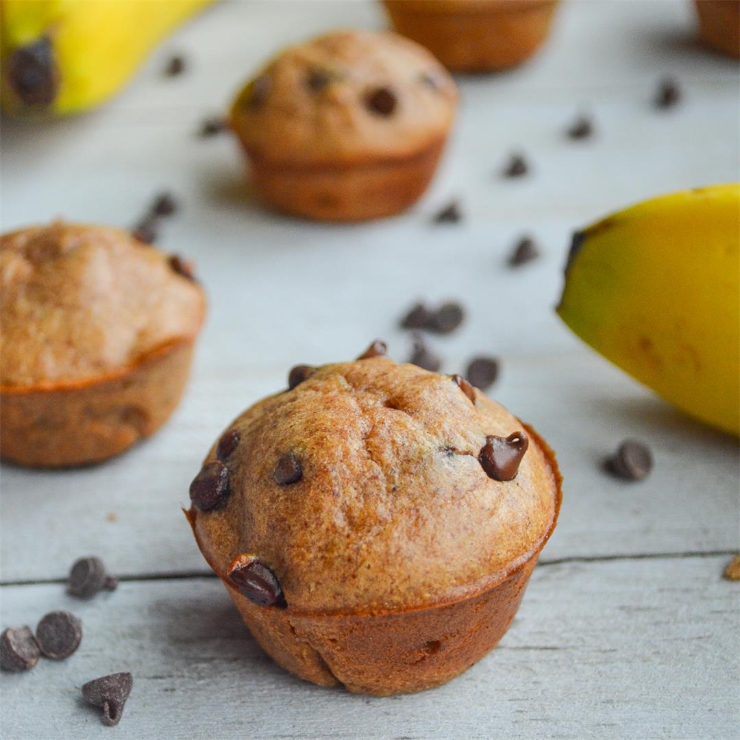 Banana Chocolate Chip Mini Muffins: paleo, gluten free