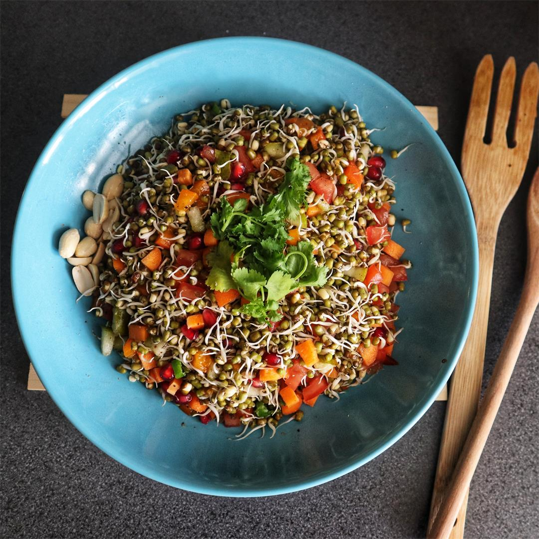 Sprouted Mung Beans Salad Bowl