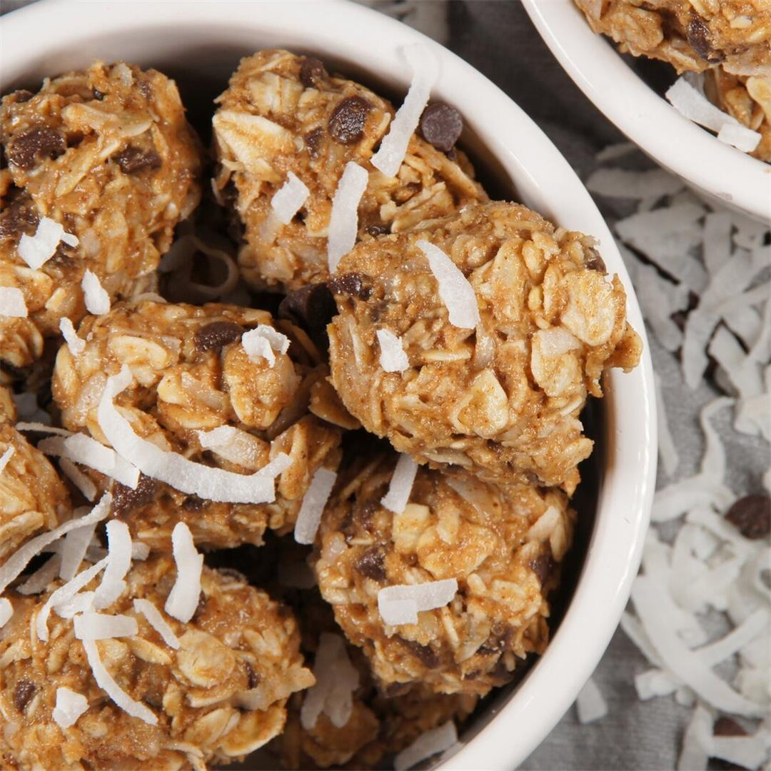 Coconut Chocolate Chip Granola Bites — Land of 10,000 Recipes