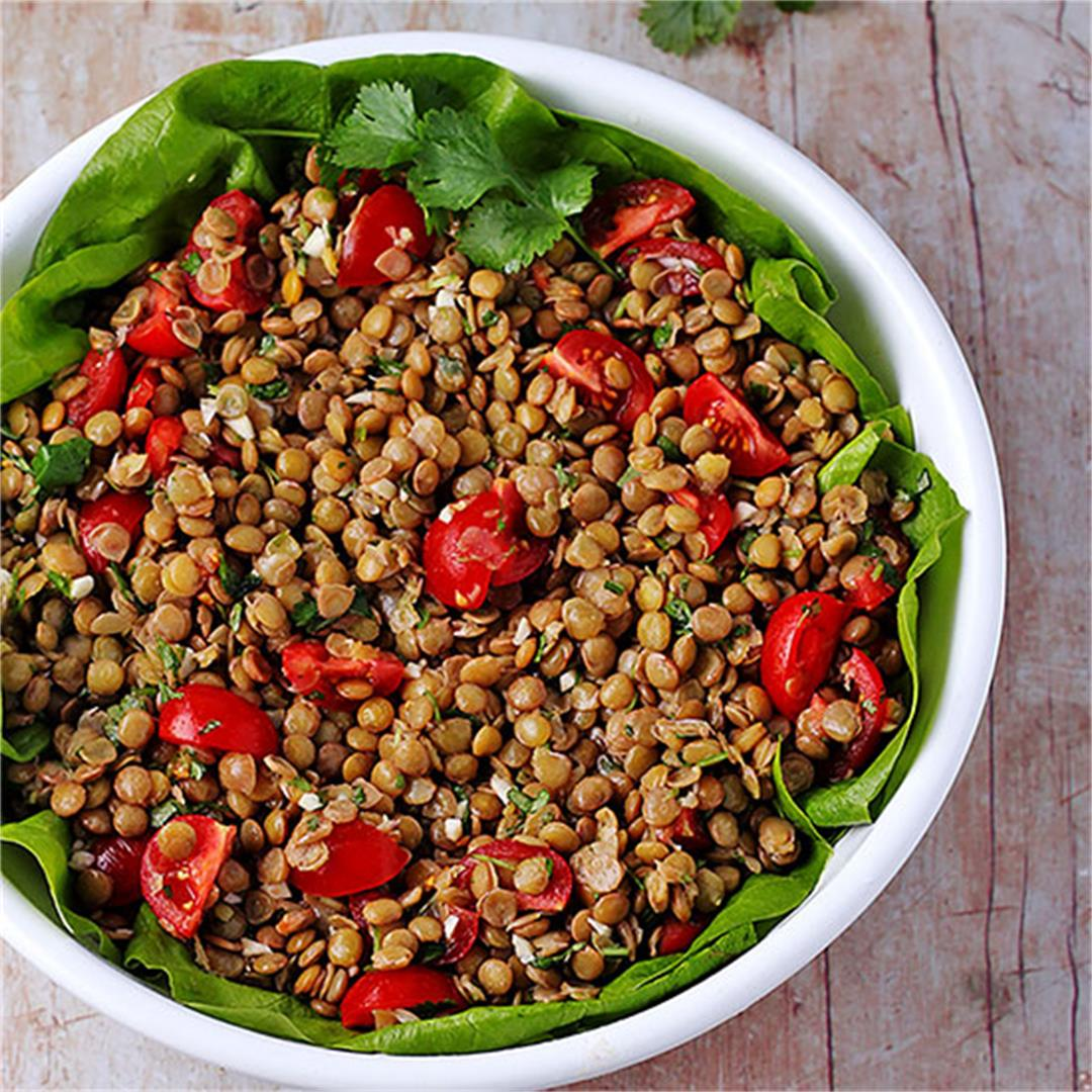 Simple green lentil salad with zesty cranberry dressing