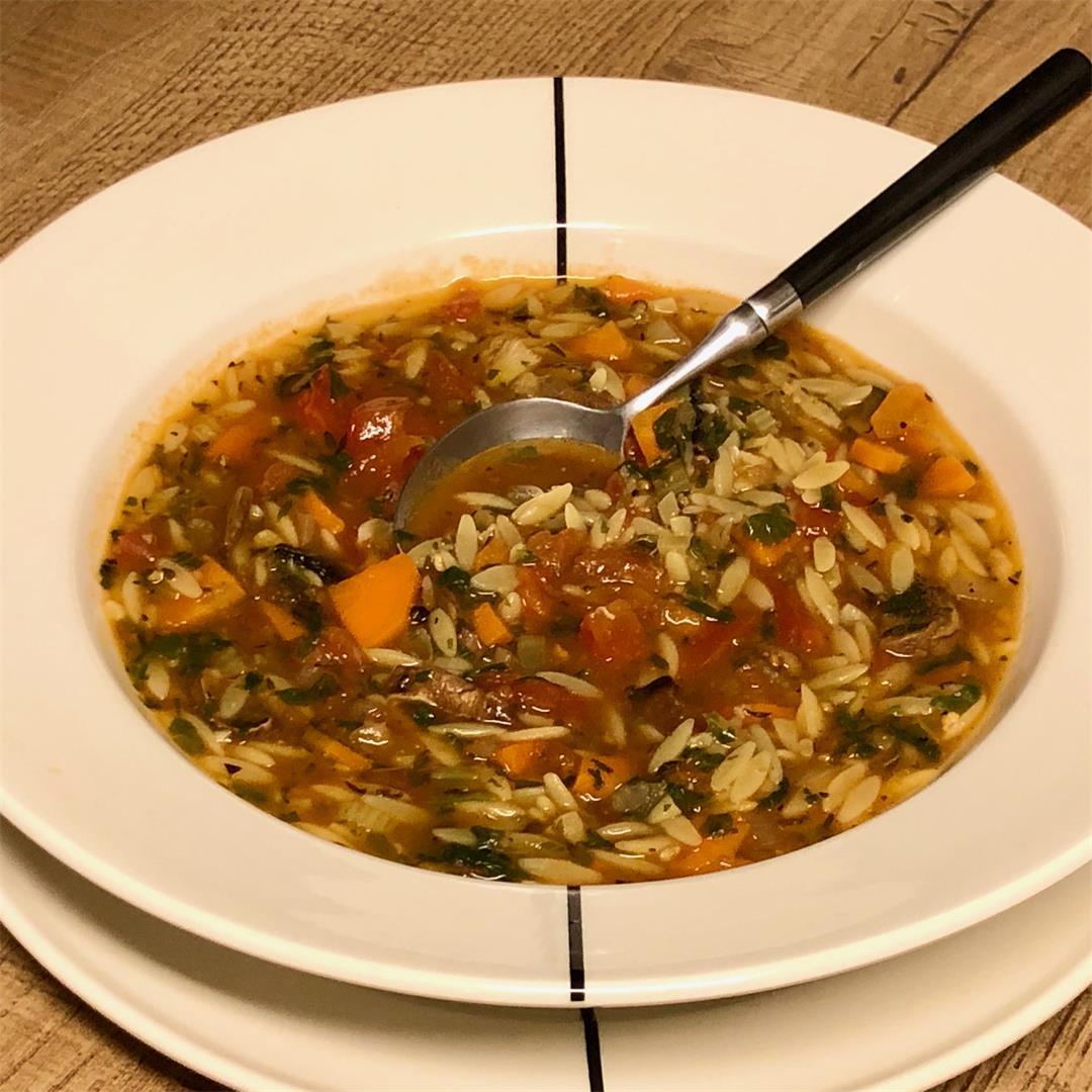 vegetarian orzo soup