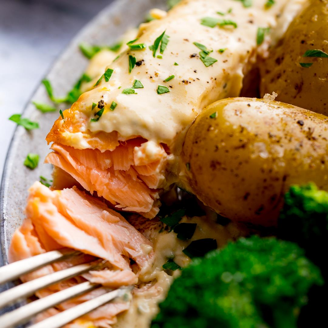 Salmon with Cream and White Wine Sauce