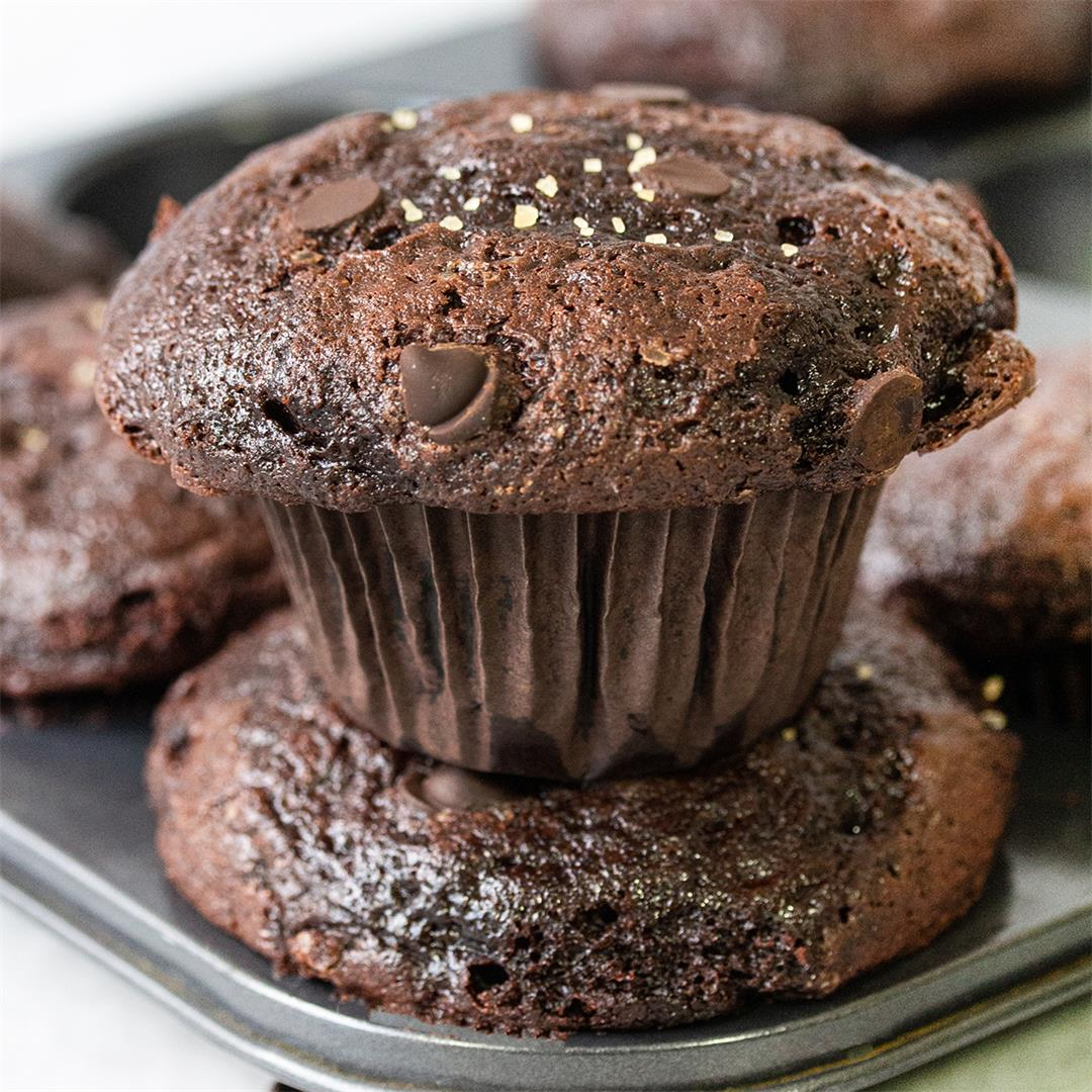 Fudgy Double Chocolate Muffins-Healthy Life Trainer
